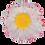 Thumbnail: 3-PC 8-PT Flower Plastic Cutter