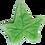 Thumbnail: 3-PC 5-PT Leaf Plastic Cutter [large]