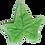 Thumbnail: 3-PC 5-PT Leaf Plastic Cutter
