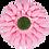 Thumbnail: 3-PC 16-PT Flower Plastic Cutter