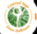 ICYA_logo_mod.png