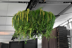 Suspended foliage chandelier