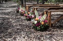 Pew end spring gardens