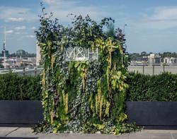 Fresh foliage wall
