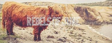 REBELS OF JUNE | PR Bild
