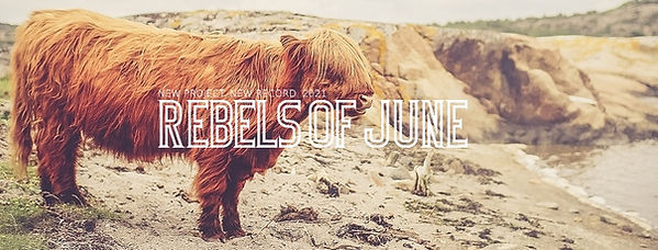 REBELS OF JUNE | PR Bild