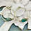 Thumbnail: African Turquoise Hammered Hoops