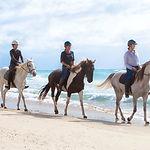 Horse Ride1.jpg