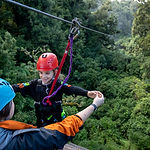 treetop-adventure-park-rotorua.jpg