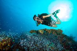 Scuba diver above a reef