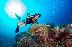 Scuba Diver at Reef