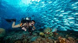 Scuba diver with fish