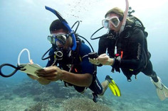 Scuba divers navigating with compass