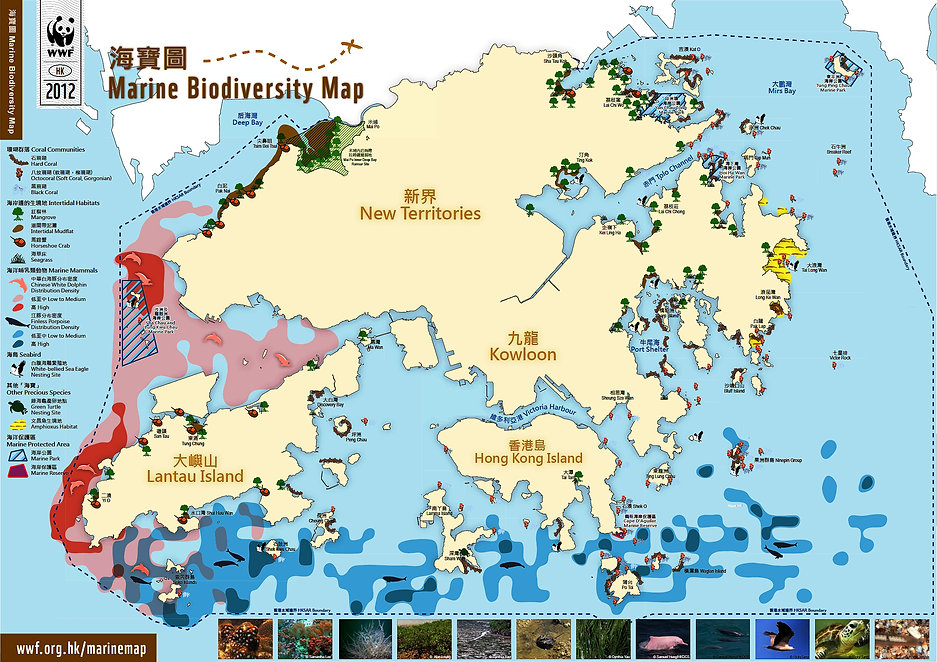 Hong Kong Marine Biodiversity Map
