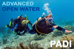 PADI 進階開放水域潛水員課程 - PADI Advanced scuba course in Hong Kong.