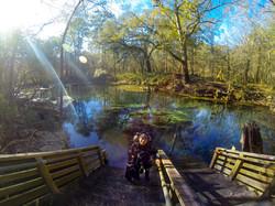 Peacock Springs, Florida