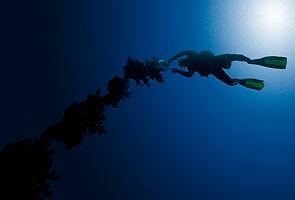 Scuba diver ascending on a line.