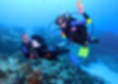PADI 水肺潛水員- PADI Scuba Diver certification is a pre-entry level certification.