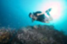 PSAI 體育潛水員方案