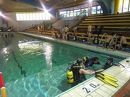 PADI 水肺潛水員- PDAI Scuba Diver Course gets you scuba diving quickly.