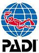 PADI Professional level courses.
