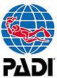 PADI Professional level courses. Instructor Development Course.