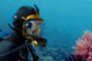 Full face mask diver