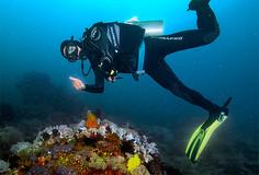Scuba diver hovering in Peak Perfomance Course