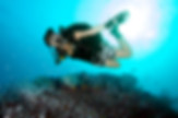 Scuba diver hovering over a reef.