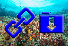 Link to scuba diving documents and resources.