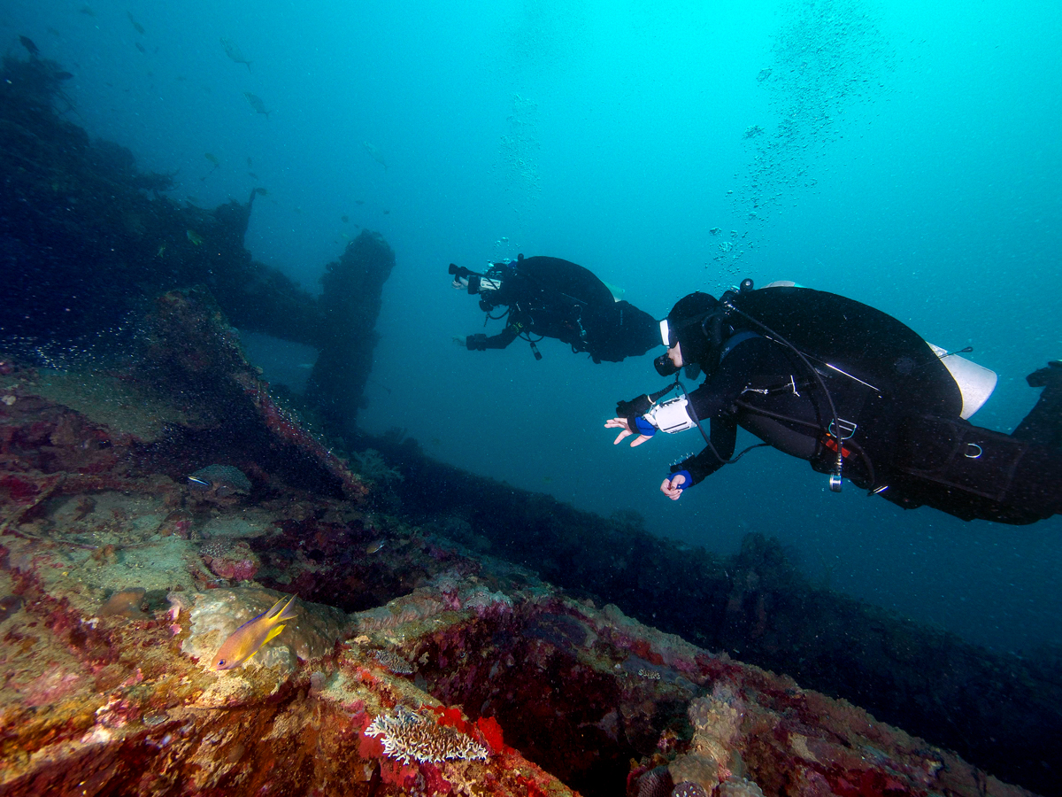 Scuba Divers at a Wreck