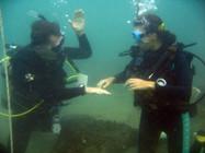 Dive course in progress
