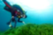 Scuba Diver: Open Water course