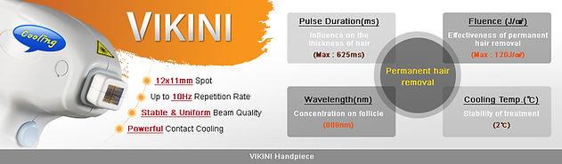 vikini_introduction_01.jpg
