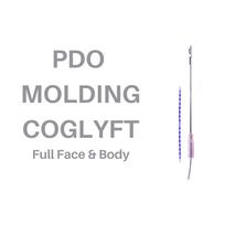 PDO MOLDING COGLYFT.png