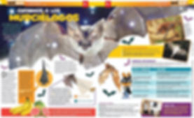 Publicación_PRENSITA_PCMES_2019.jpg