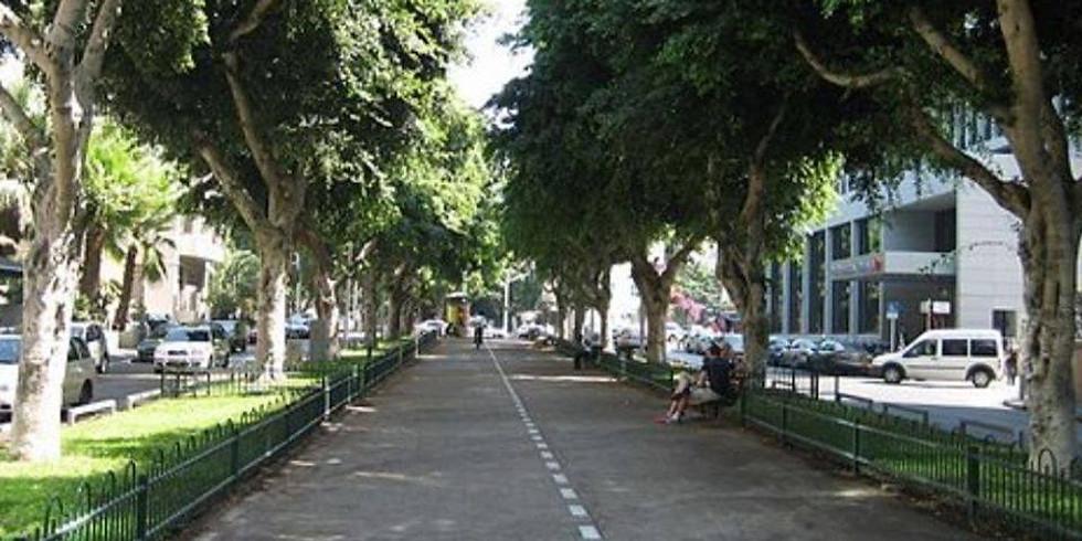 תל אביב   מצעד התחפושות המסורתי של פורים בשדרות רוטשילד
