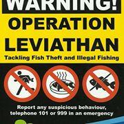 Operation Leviathan