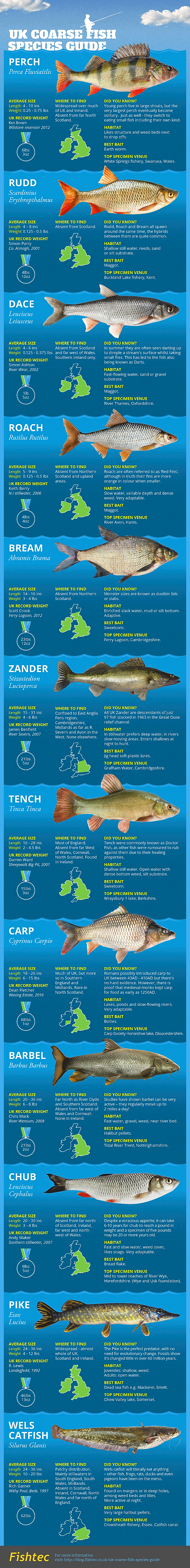 Guide to Coarse Fish Species