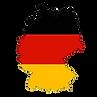 singa logo Kopyası Kopyası.png