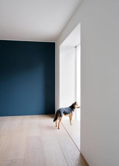 Architekturfotograf Frankfurt am Main Wohnhaus WWW6
