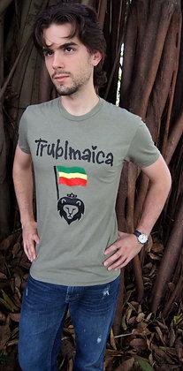 Crew neck T-Shirt (M): Lion Flag