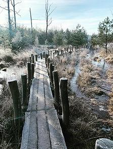 Plankpad winterwandeling.jpg