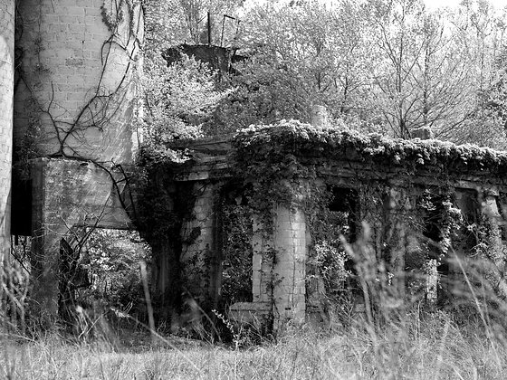 RUINS I, side of the road, TN