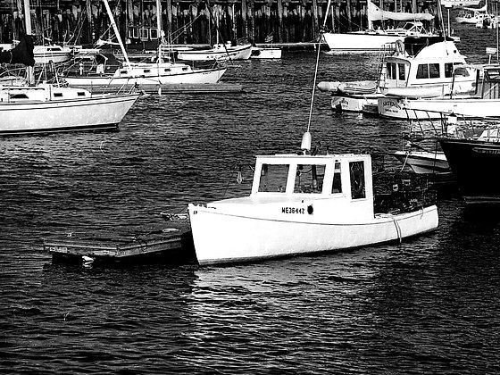 Lone Boat, Maine