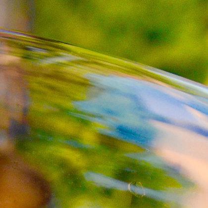 Wine Flow, wine reflections, Granada, Spain