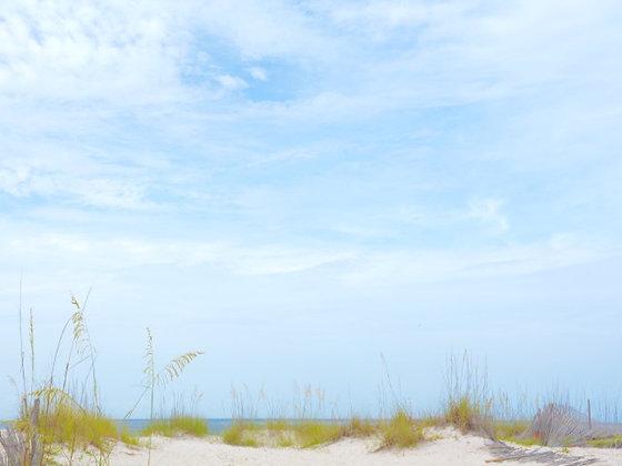 Dunes 1, Gulf Coast