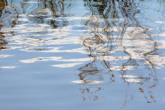 Brown Peace, Lake Pontchartrain on a beautiful day