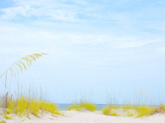 Dunes 2, Gulf Coast