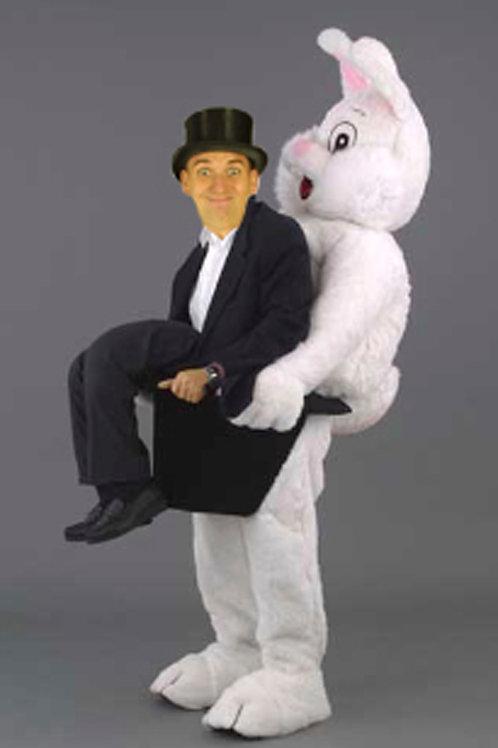 Rudi Rabbit